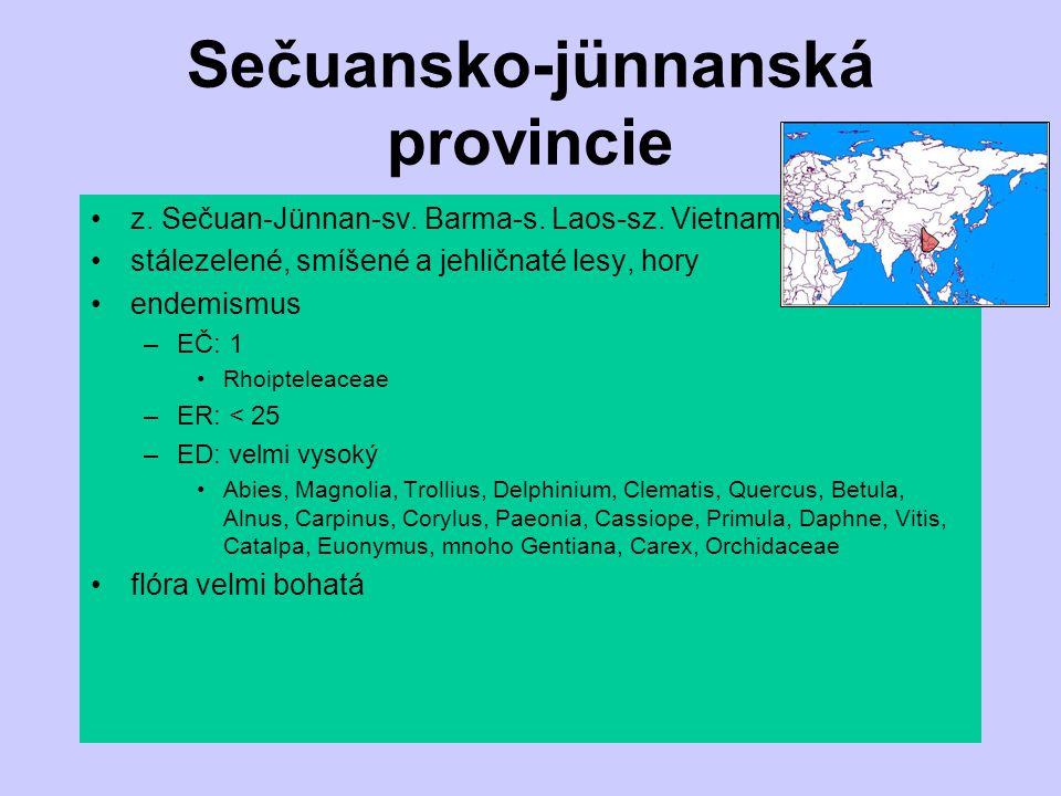 Sečuansko-jünnanská provincie z. Sečuan-Jünnan-sv. Barma-s. Laos-sz. Vietnam stálezelené, smíšené a jehličnaté lesy, hory endemismus –EČ: 1 Rhoiptelea