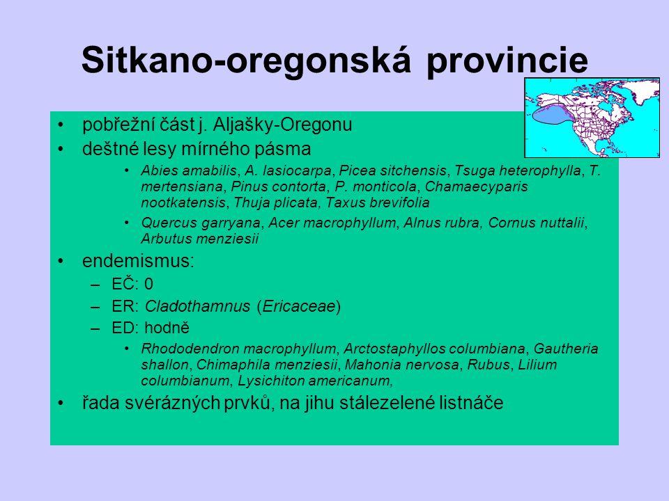 Sitkano-oregonská provincie pobřežní část j. Aljašky-Oregonu deštné lesy mírného pásma Abies amabilis, A. lasiocarpa, Picea sitchensis, Tsuga heteroph