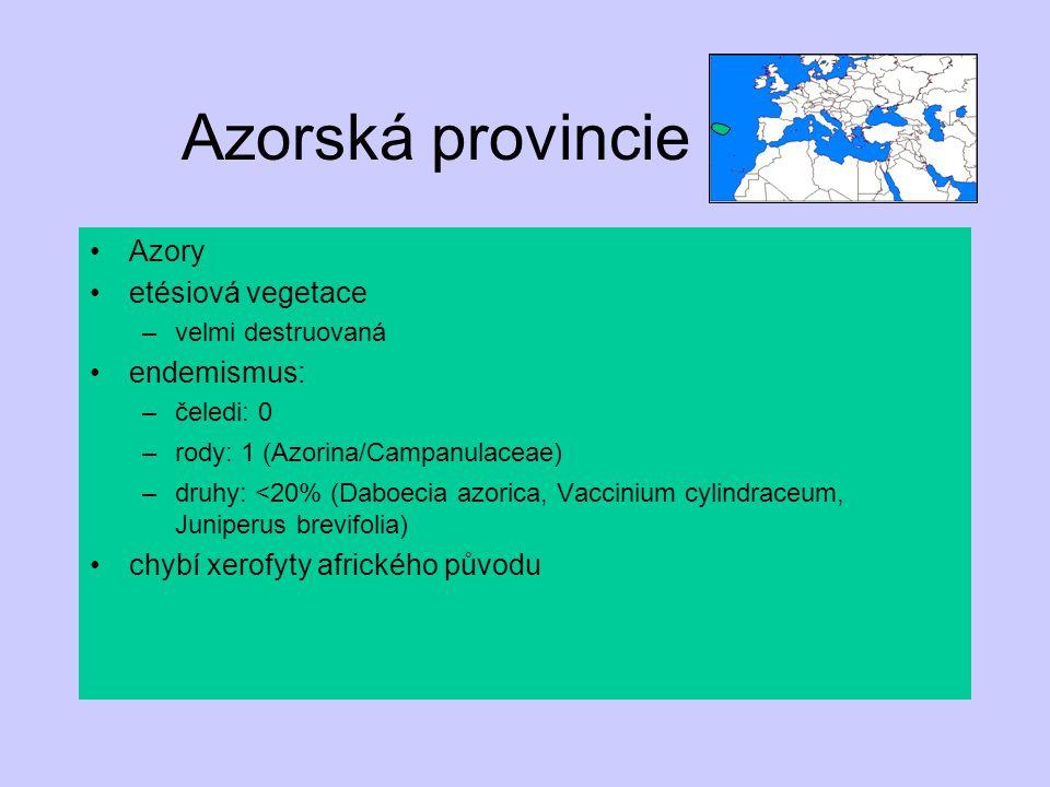 Azorská provincie Azory etésiová vegetace –velmi destruovaná endemismus: –čeledi: 0 –rody: 1 (Azorina/Campanulaceae) –druhy: <20% (Daboecia azorica, V