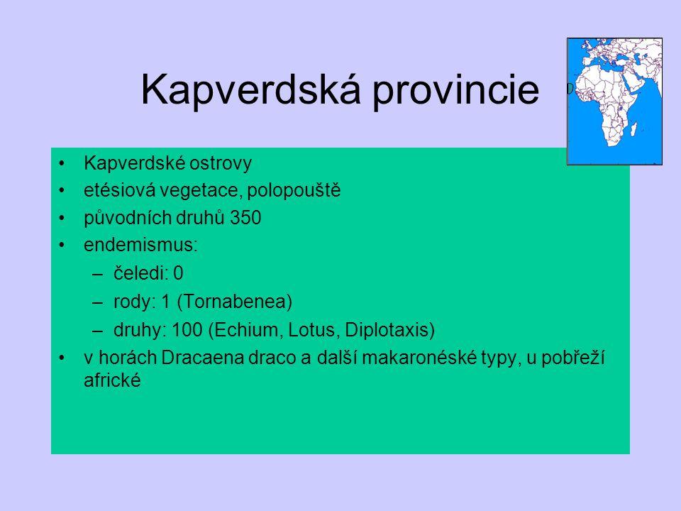 Kapverdská provincie Kapverdské ostrovy etésiová vegetace, polopouště původních druhů 350 endemismus: –čeledi: 0 –rody: 1 (Tornabenea) –druhy: 100 (Ec