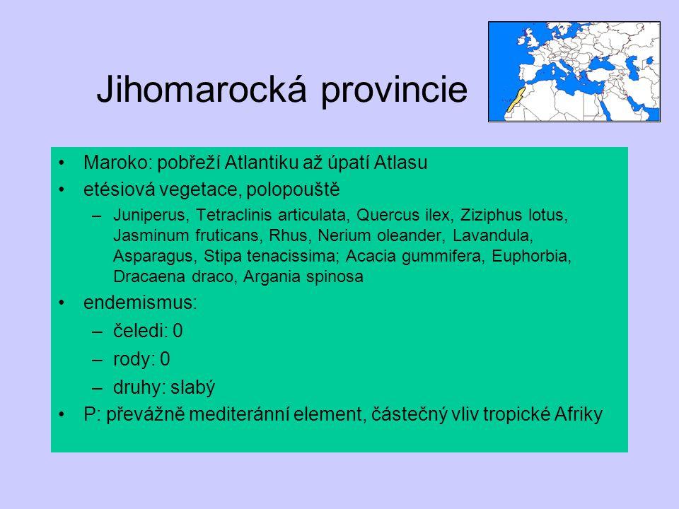 Jihomarocká provincie Maroko: pobřeží Atlantiku až úpatí Atlasu etésiová vegetace, polopouště –Juniperus, Tetraclinis articulata, Quercus ilex, Ziziph