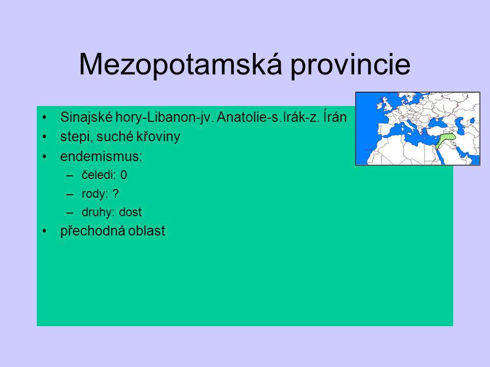 Mezopotamská provincie Sinajské hory-Libanon-jv. Anatolie-s.Irák-z. Írán stepi, suché křoviny endemismus: –čeledi: 0 –rody: ? –druhy: dost přechodná o