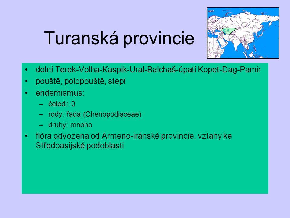 Turanská provincie dolní Terek-Volha-Kaspik-Ural-Balchaš-úpatí Kopet-Dag-Pamir pouště, polopouště, stepi endemismus: –čeledi: 0 –rody: řada (Chenopodi