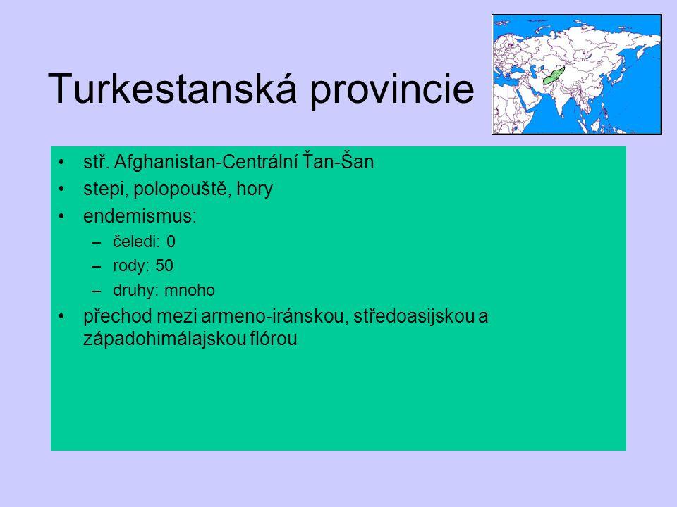Turkestanská provincie stř. Afghanistan-Centrální Ťan-Šan stepi, polopouště, hory endemismus: –čeledi: 0 –rody: 50 –druhy: mnoho přechod mezi armeno-i
