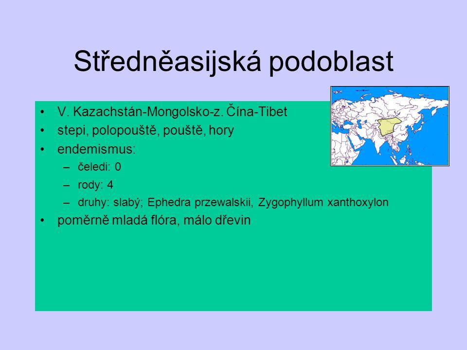 Středněasijská podoblast V. Kazachstán-Mongolsko-z. Čína-Tibet stepi, polopouště, pouště, hory endemismus: –čeledi: 0 –rody: 4 –druhy: slabý; Ephedra