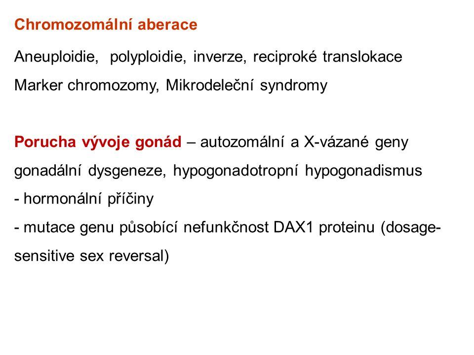Chromozomální aberace Aneuploidie, polyploidie, inverze, reciproké translokace Marker chromozomy, Mikrodeleční syndromy Porucha vývoje gonád – autozom