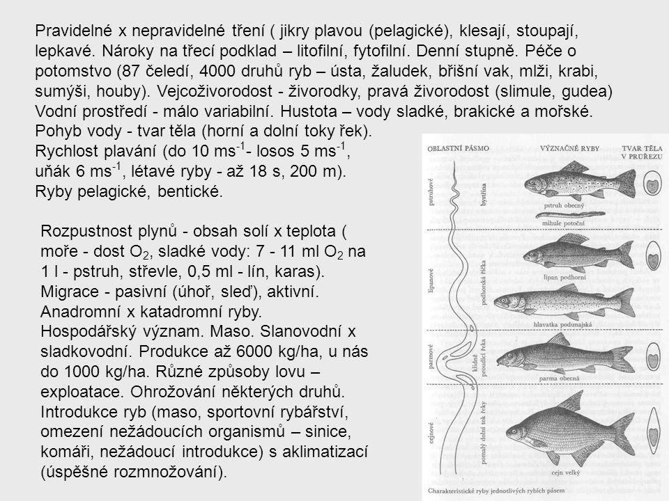Pravidelné x nepravidelné tření ( jikry plavou (pelagické), klesají, stoupají, lepkavé. Nároky na třecí podklad – litofilní, fytofilní. Denní stupně.