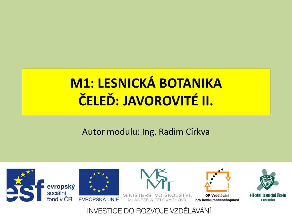 M1: LESNICKÁ BOTANIKA ČELEĎ: JAVOROVITÉ II. Autor modulu: Ing. Radim Církva