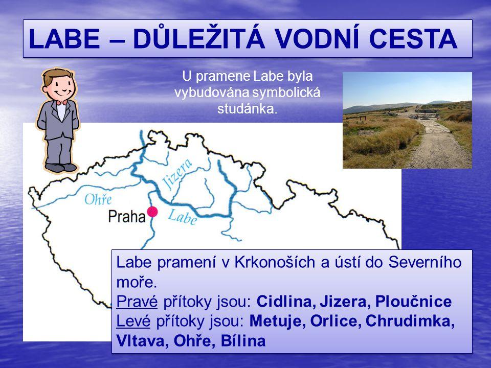 ŘEKA MORAVA Pramení na svazích Kralického Sněžníku v Jeseníkách.