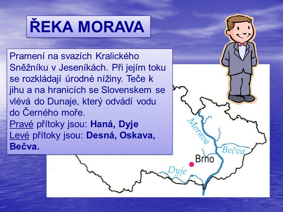 ŘEKA MORAVA Pramení na svazích Kralického Sněžníku v Jeseníkách. Při jejím toku se rozkládají úrodné nížiny. Teče k jihu a na hranicích se Slovenskem