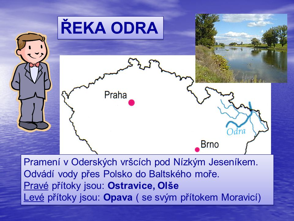 ŘEKA ODRA Pramení v Oderských vršcích pod Nízkým Jeseníkem. Odvádí vody přes Polsko do Baltského moře. Pravé přítoky jsou: Ostravice, Olše Levé přítok