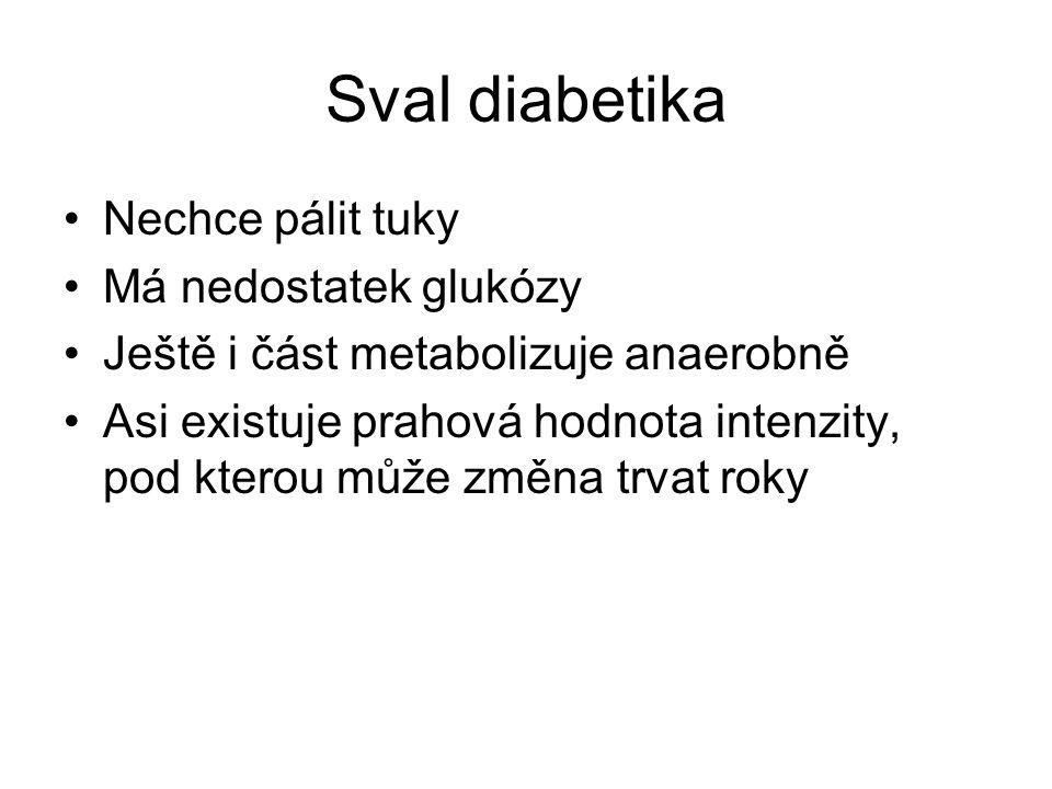 Sval diabetika Nechce pálit tuky Má nedostatek glukózy Ještě i část metabolizuje anaerobně Asi existuje prahová hodnota intenzity, pod kterou může změ