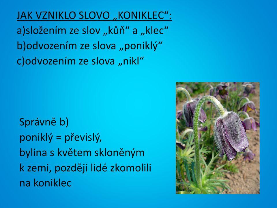 """JAK VZNIKLO SLOVO """"KONIKLEC"""": a)složením ze slov """"kůň"""" a """"klec"""" b)odvozením ze slova """"poniklý"""" c)odvozením ze slova """"nikl"""" Správně b) poniklý = převis"""