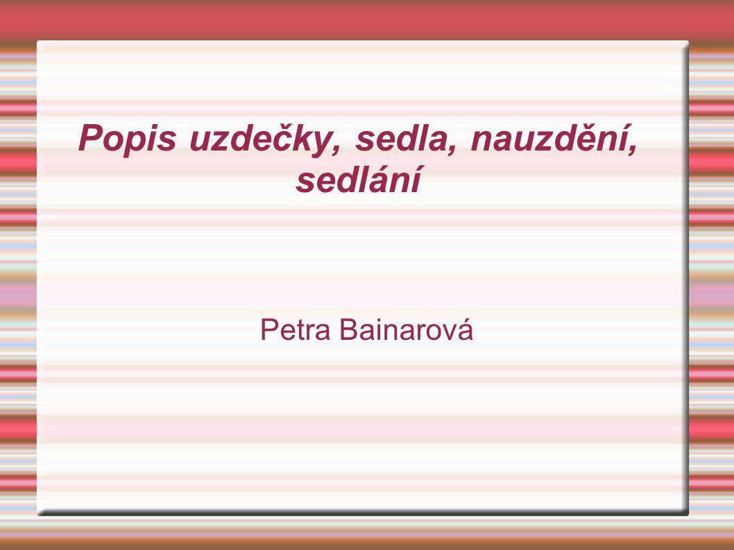 Popis uzdečky, sedla, nauzdění, sedlání Petra Bainarová