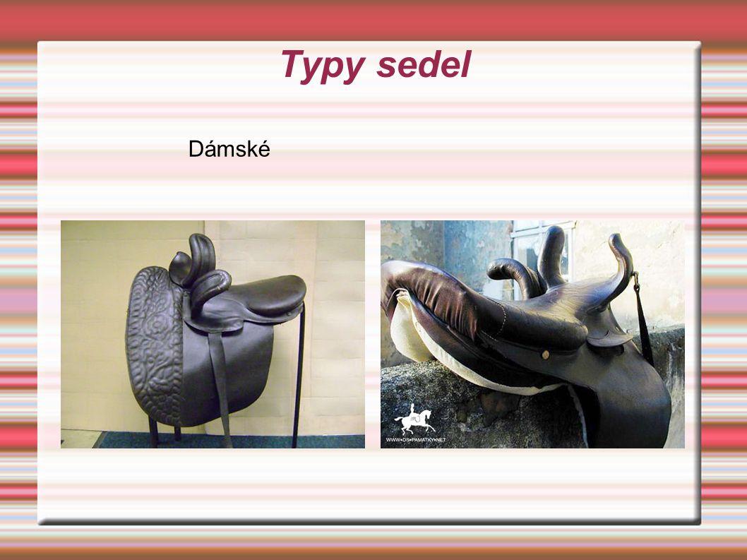 Typy sedel Dámské