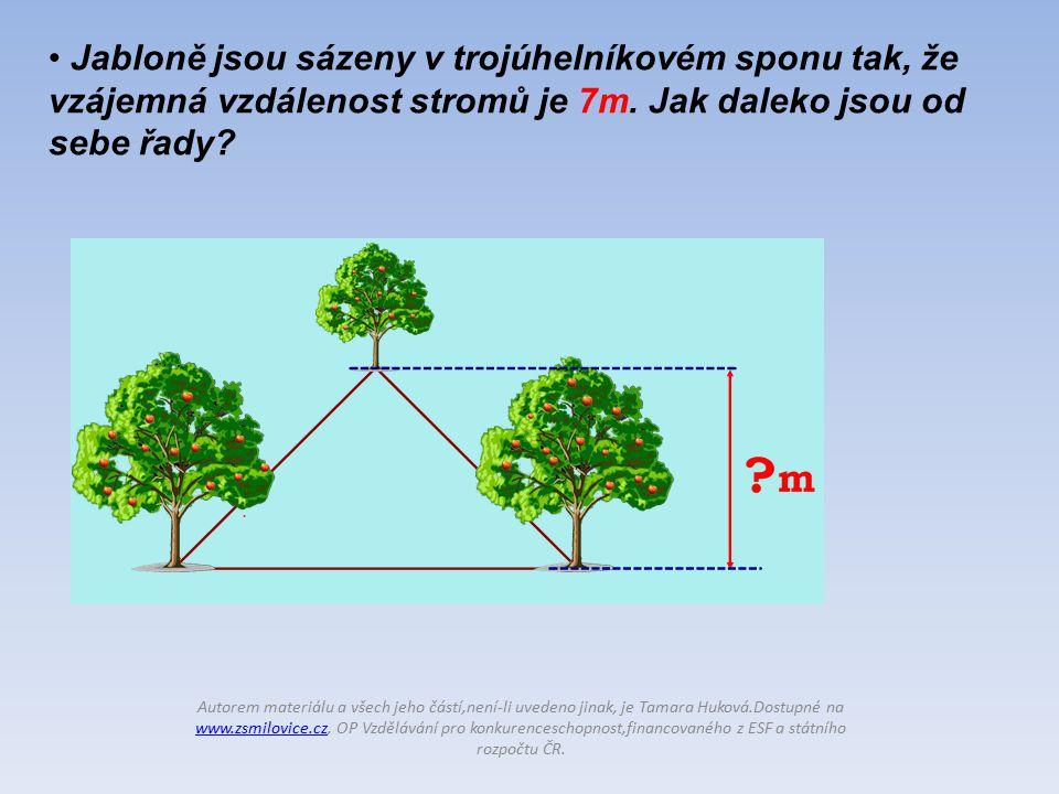 Jabloně jsou sázeny v trojúhelníkovém sponu tak, že vzájemná vzdálenost stromů je 7m.
