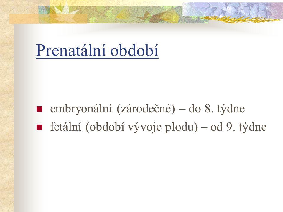 Prenatální období embryonální (zárodečné) – do 8. týdne fetální (období vývoje plodu) – od 9. týdne