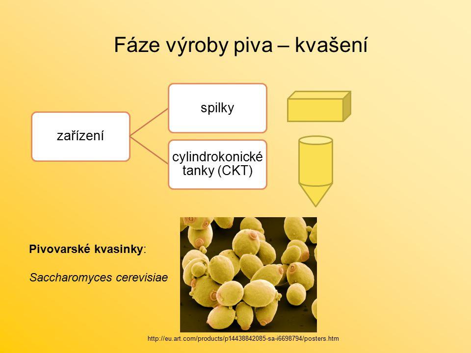 Fáze výroby piva – kvašení zařízeníspilky cylindrokonické tanky (CKT) Pivovarské kvasinky: Saccharomyces cerevisiae http://eu.art.com/products/p14438842085-sa-i6698794/posters.htm