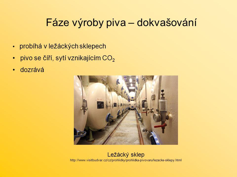 Fáze výroby piva – dokvašování probíhá v ležáckých sklepech pivo se číří, sytí vznikajícím CO 2 dozrává Ležácký sklep http://www.visitbudvar.cz/cz/prohlidky/prohlidka-pivovaru/lezacke-sklepy.html