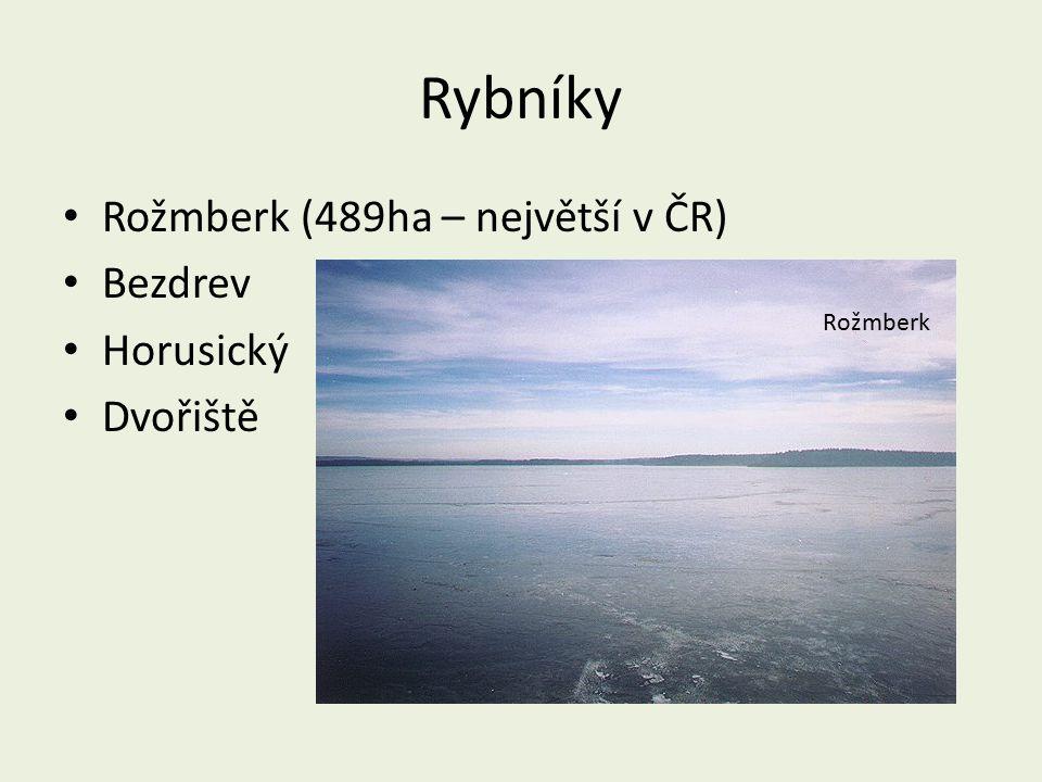 Rybníky Rožmberk (489ha – největší v ČR) Bezdrev Horusický Dvořiště Rožmberk