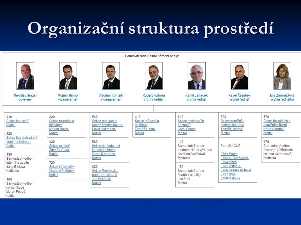 Organizační struktura prostředí