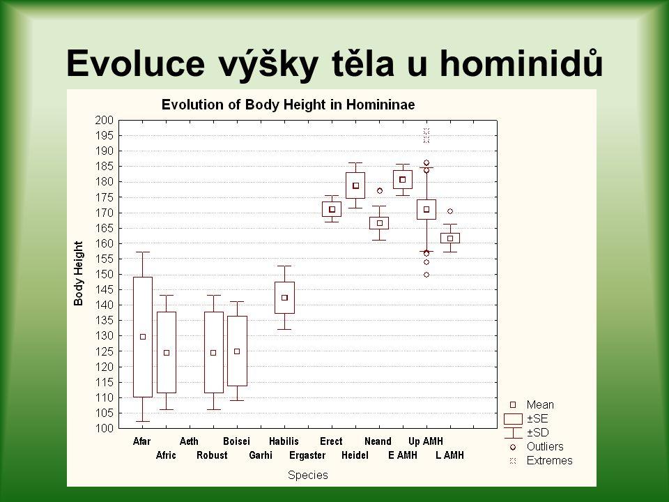 "Tělesná výška u ranných homininů Homo habilis a OH 62 (""9"")"