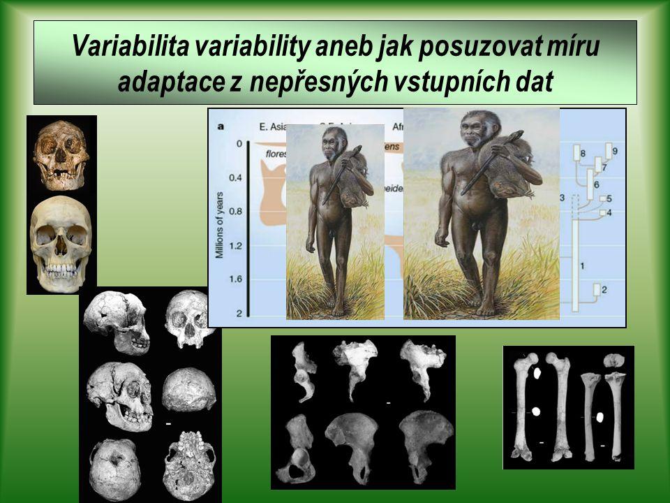 Variabilita a adaptibilita člověka 4 Doc. Václav Vančata