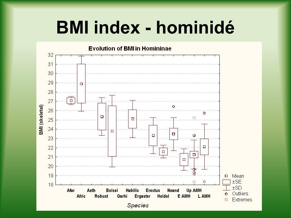 Rohrerův index - hominidé