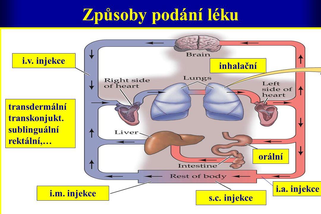 Způsoby podání léku transdermální transkonjukt. sublinguální rektální,… inhalační orální s.c. injekce i.m. injekce i.v. injekce i.a. injekce