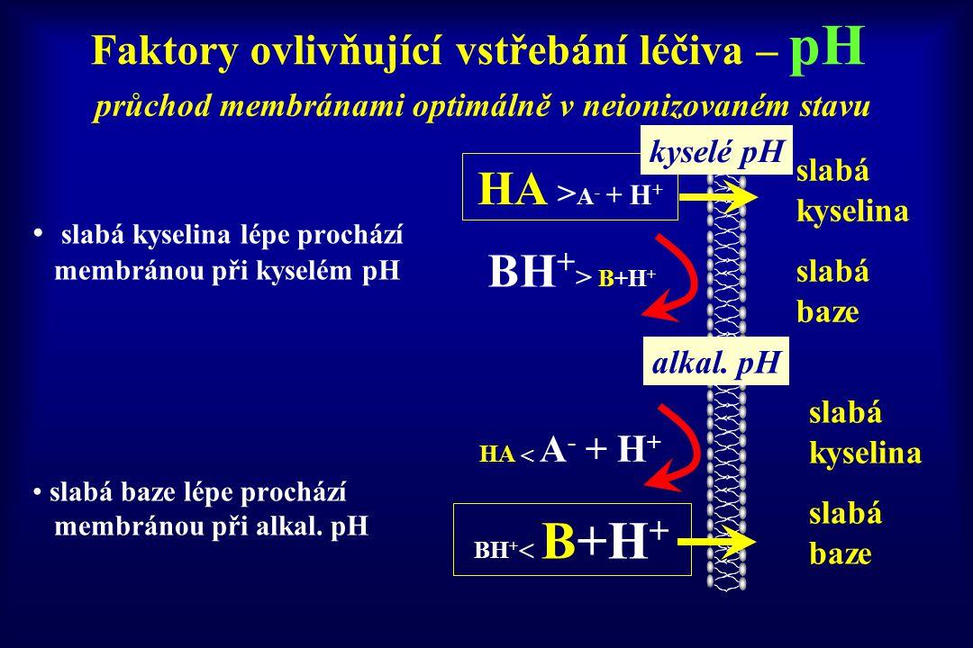 Faktory ovlivňující vstřebání léčiva – pH slabá kyselina lépe prochází membránou při kyselém pH slabá baze lépe prochází membránou při alkal. pH BH +