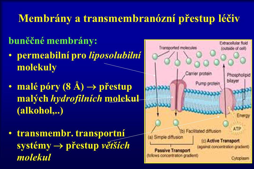 Membrány a transmembranózní přestup léčiv buněčné membrány: permeabilní pro liposolubilní molekuly malé póry (8 Å)  přestup malých hydrofilních molek
