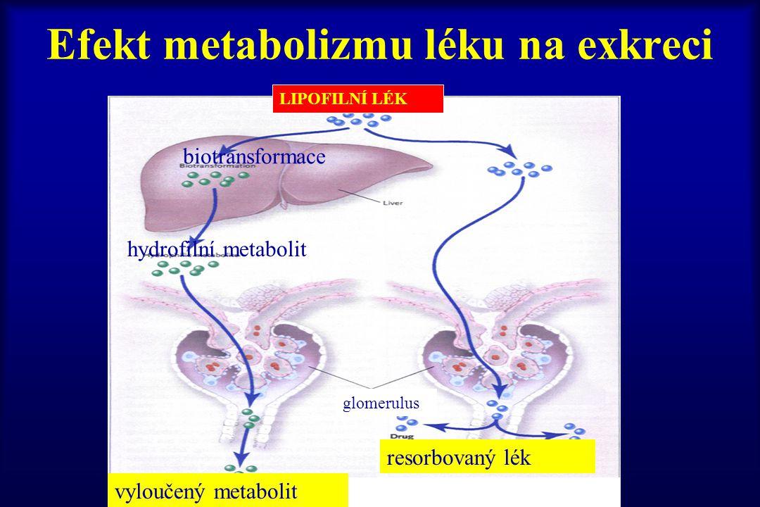 Efekt metabolizmu léku na exkreci LIPOFILNÍ LÉK biotransformace hydrofilní metabolit glomerulus resorbovaný lék vyloučený metabolit