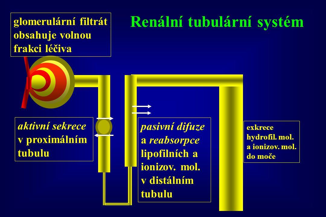 Renální tubulární systém glomerulární filtrát obsahuje volnou frakci léčiva aktivní sekrece v proximálním tubulu pasivní difuze a reabsorpce lipofilních a neionizovaných molekul v dist.