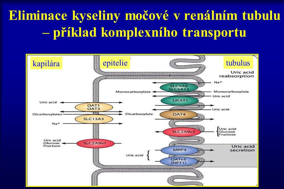 CLEARANCE - objem plazmy zcela očištěné od léčiva za jednotku času (ml/min/kg) CL tot celková CL R renální CL H hepatální CL NR nerenální (= Cl tot - CL R )