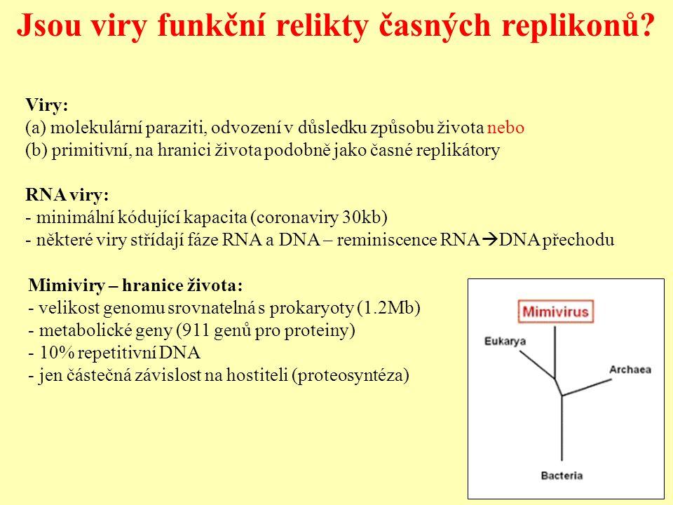 Jsou viry funkční relikty časných replikonů.