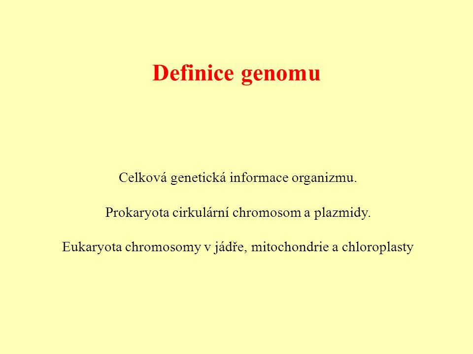 Definice genomu Celková genetická informace organizmu.
