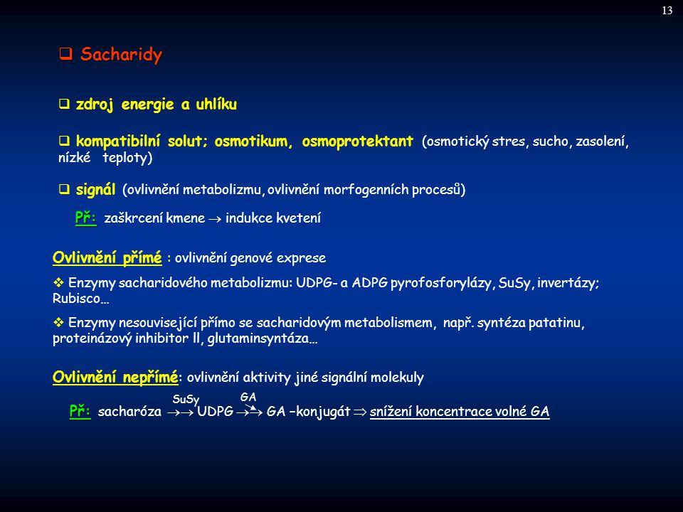  Sacharidy Ovlivnění přímé : ovlivnění genové exprese  Enzymy sacharidového metabolizmu: UDPG- a ADPG pyrofosforylázy, SuSy, invertázy; Rubisco…  E
