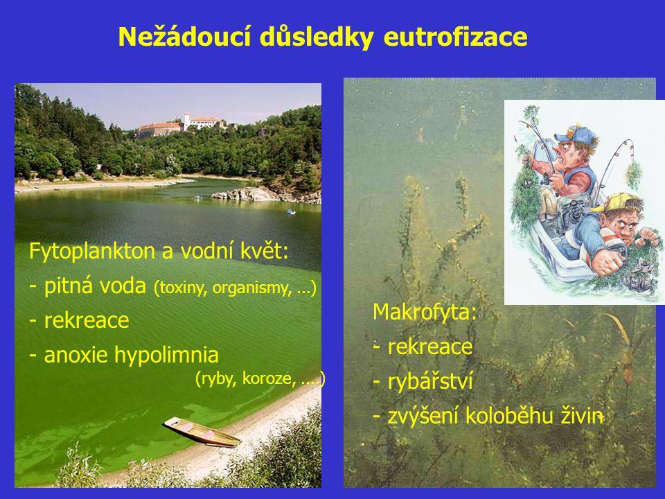 Nežádoucí důsledky eutrofizace Fytoplankton a vodní květ: - pitná voda (toxiny, organismy,...) - rekreace - anoxie hypolimnia (ryby, koroze,....) Makr