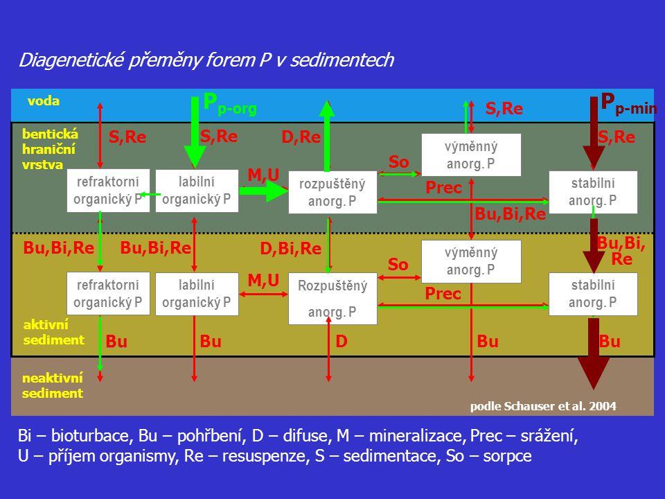 voda bentická hraniční vrstva aktivní sediment neaktivní sediment podle Schauser et al. 2004 Diagenetické přeměny forem P v sedimentech refraktorní or