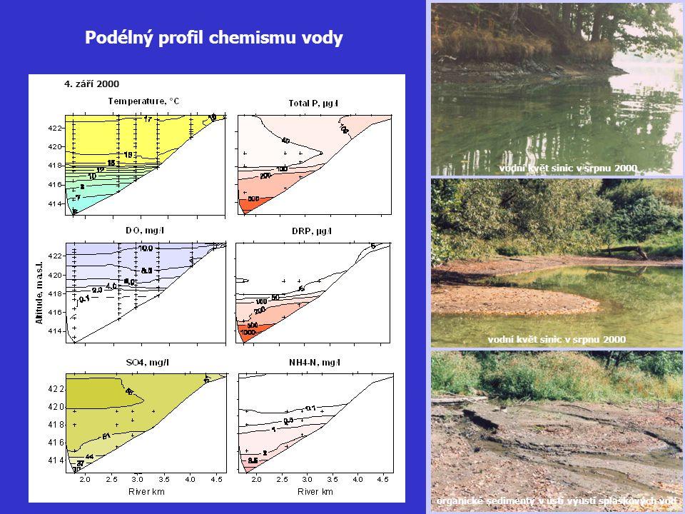 vodní květ sinic v srpnu 2000 organické sedimenty v ústí výusti splaškových vod Podélný profil chemismu vody 4. září 2000 vodní květ sinic v srpnu 200