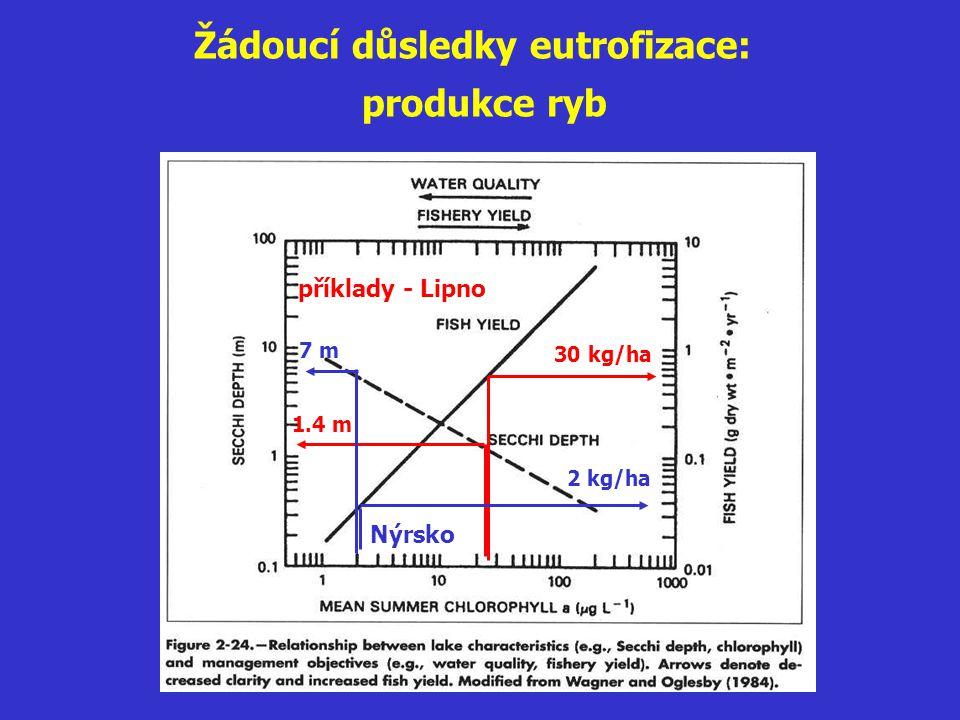Žádoucí důsledky eutrofizace: produkce ryb 1.4 m 30 kg/ha příklady - Lipno 7 m 2 kg/ha Nýrsko