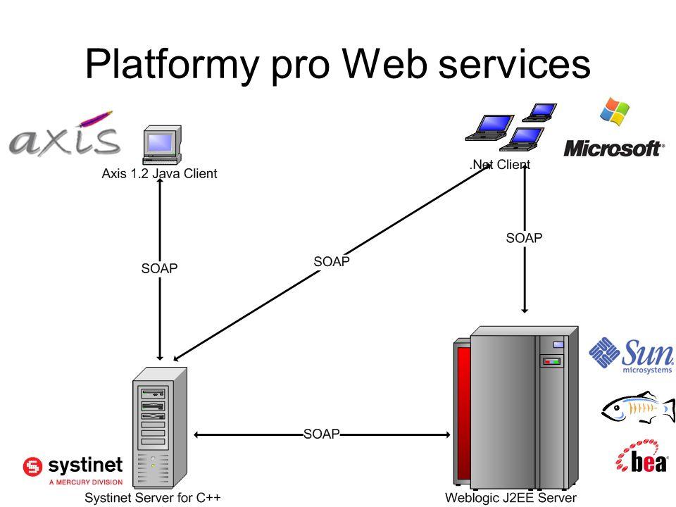 Platformy pro Web services
