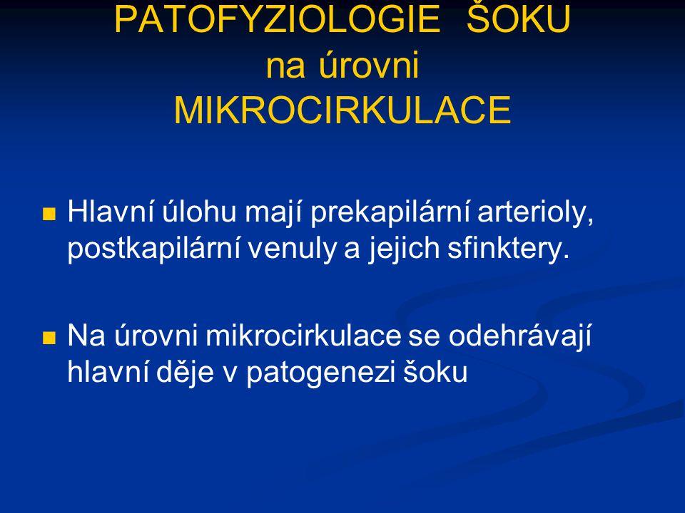 PATOFYZIOLOGIE ŠOKU na úrovni MIKROCIRKULACE Hlavní úlohu mají prekapilární arterioly, postkapilární venuly a jejich sfinktery. Na úrovni mikrocirkula