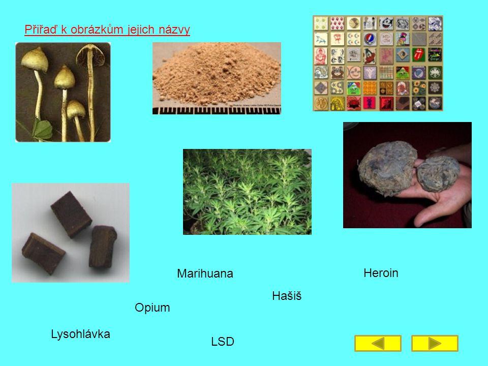 Lysohlávka Přiřaď k obrázkům jejich názvy Hašiš Opium Heroin Marihuana LSD