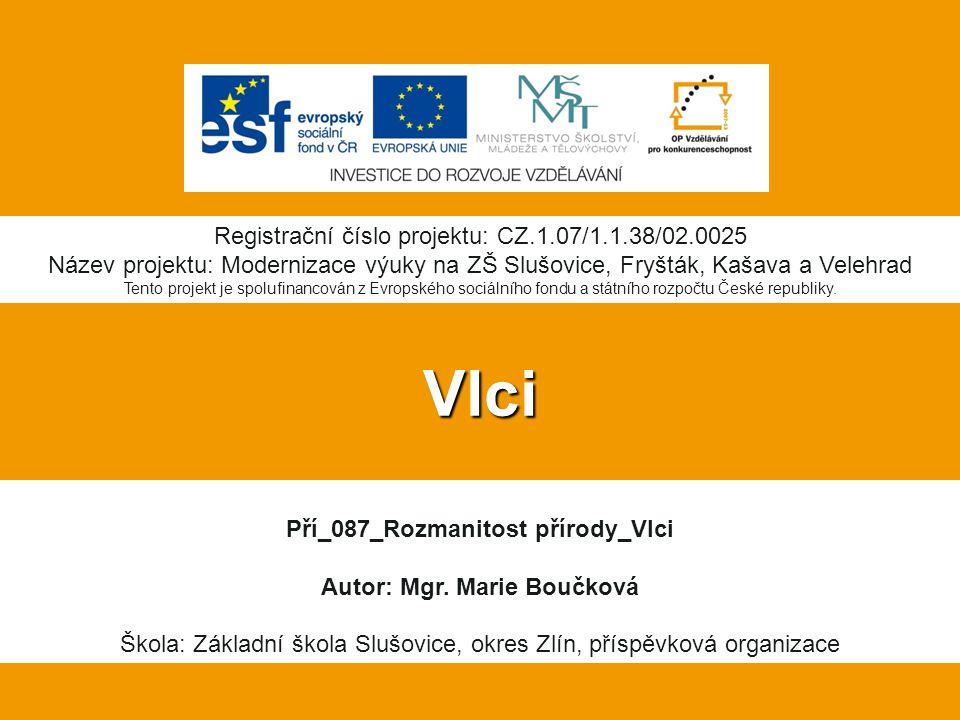 10.Soubor:Schema-psy-vyvoj česky.jpg.In: Wikipedia: the free encyclopedia [online].