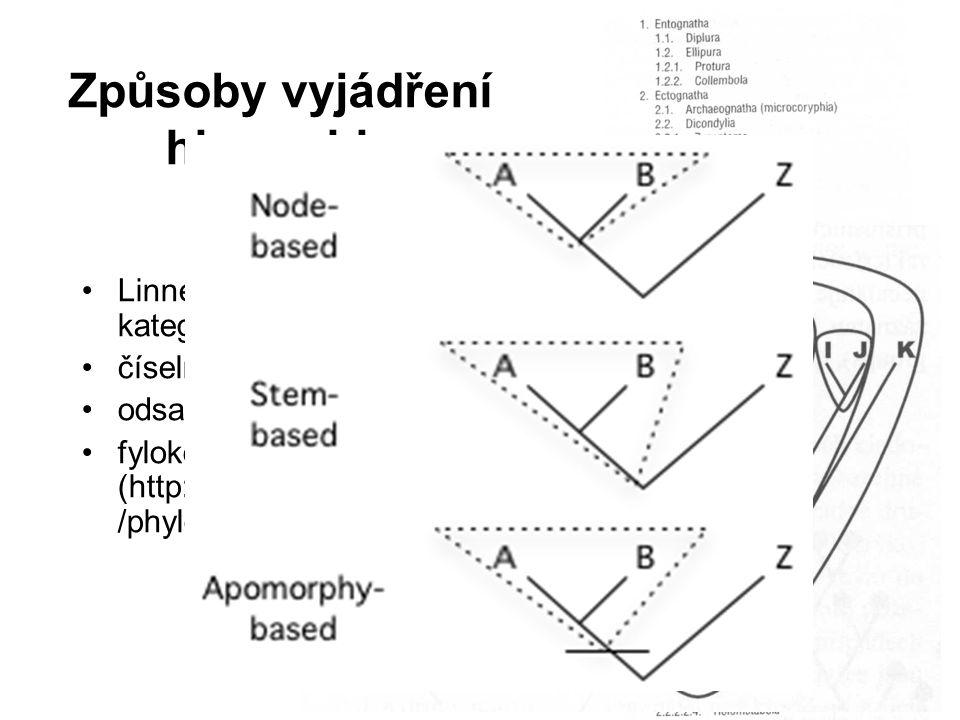 Převod fylogeneze do systému 1)formálně klasifikujeme jen monofyletické skupiny 2)každá klasifikace musí logicky souhlasit s hypotézou o fylogenezi, kterou zastáváme 3)klasifikace by měla odrážet sesterské vztahy mezi taxony Doporučení -Linnéovský systém kategorií -pokud možno minimálně měnit existující klasifikaci -postupně se odvětvujícím skupinám lze konvenčně přiřadit stejnou kategorii -monofyletické taxony s nejistou příbuzností zařadit jako incertae sedis na úroveň hierarchie, do které jistě patří