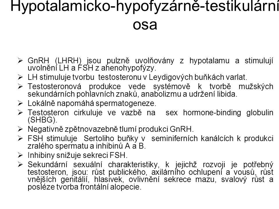 Hypotalamicko-hypofyzárně-testikulární osa  GnRH (LHRH) jsou pulzně uvolňovány z hypotalamu a stimulují uvolnění LH a FSH z ahenohypofýzy.  LH stimu