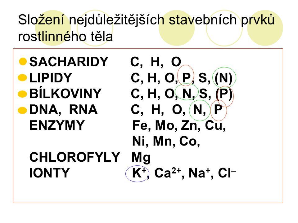 Složení nejdůležitějších stavebních prvků rostlinného těla SACHARIDY C, H, O LIPIDY C, H, O, P, S, (N) BÍLKOVINY C, H, O, N, S, (P) DNA, RNA C, H, O,