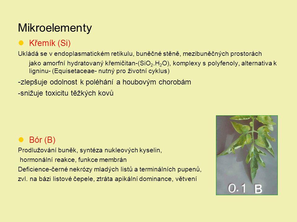 Mikroelementy Křemík (Si) Ukládá se v endoplasmatickém retikulu, buněčné stěně, mezibuněčných prostorách jako amorfní hydratovaný křemičitan-(SiO 2.H