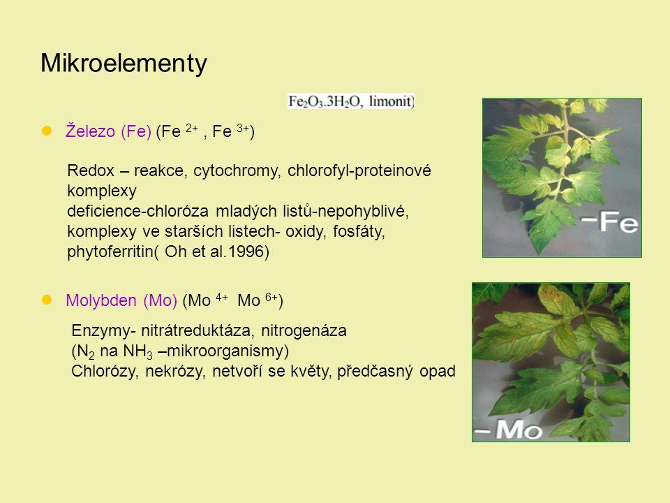Mikroelementy Železo (Fe) (Fe 2+, Fe 3+ ) Molybden (Mo) (Mo 4+ Mo 6+ ) Redox – reakce, cytochromy, chlorofyl-proteinové komplexy deficience-chloróza m
